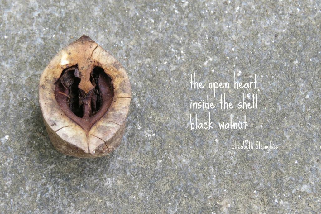 walnutshell